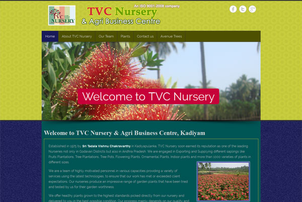 Nursery in Kadiyam – TVC Nursery