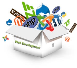 web design in rajahmundry